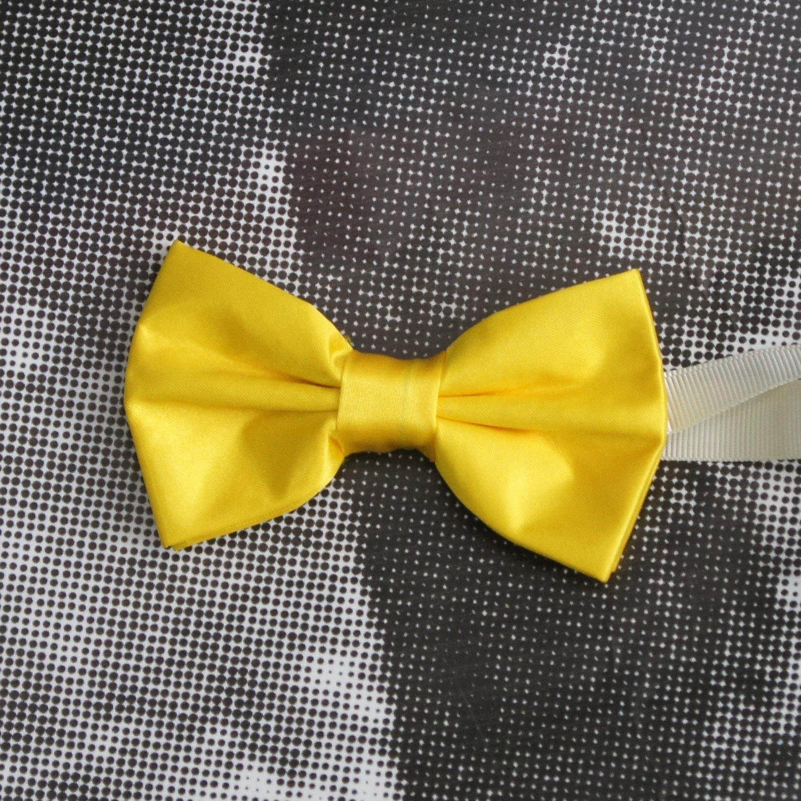 muska leptir masna #159 - leptir masne, muske kosulje, muska odela, odelo za vencanje, matura, svadba, vencanica, muska odela cene