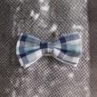 Leptir masne-Beograd-Prodaja- Leptir masne, beograd, novi sad, kragujevac, zrenjanin, pancevo, kravate, negotin, nis, vranje, sabac, vrsac
