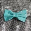 Leptir masne - Beograd- Leptir masne prodaja, leptir masne svih boja i dezena, beograd, porucivanje, online kupovina, poklon, pokloni