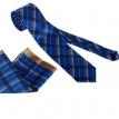 kravate- muska odela boss, odela za vencanje beograd, muska odela pal zileri, odela od vune